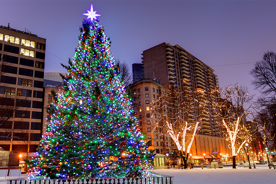 Fresh New Fall Hd Wallpapers Christmas Tree Lightings And Holiday Events Around Boston