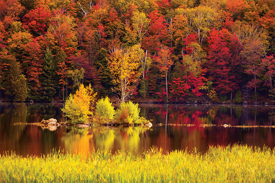 Fall Wallpaper Road New England Road Trip Guide The Definitive Vermont