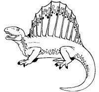 Disegno di Spinosauro da Colorare - Acolore.com