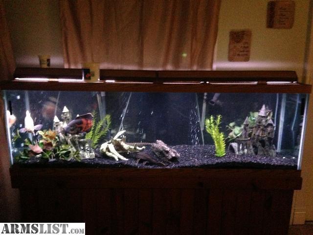 Fish tanks for sale 125 gallon armslist for sale trade for 125 gallon fish tank stand