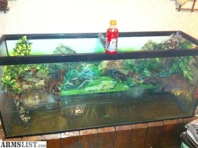 aquariums offer used 500 gallon aquarium aquarium top aquarium gallon