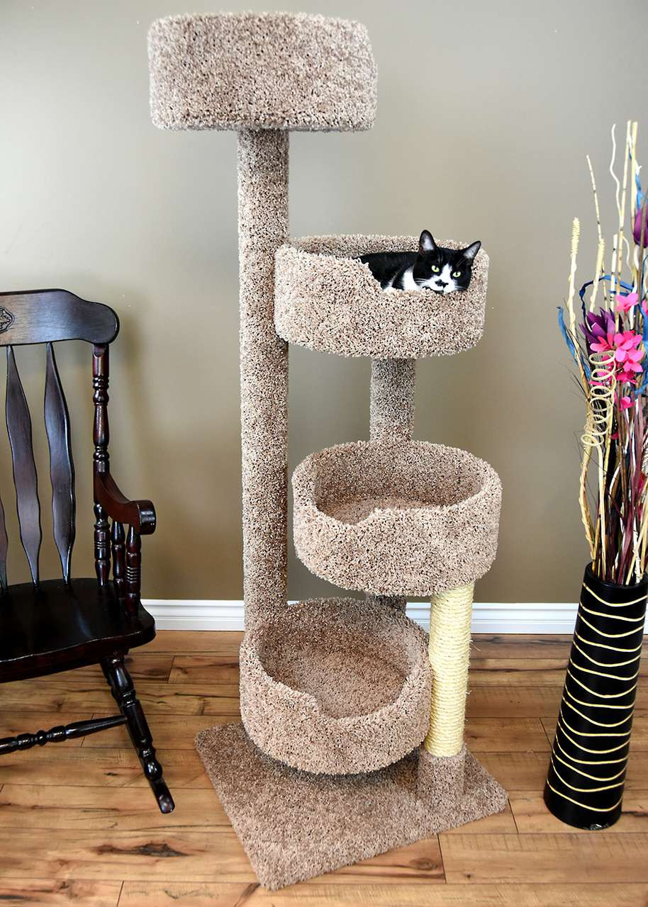 Pretty Cat Furniture New Cat Condos Stairway Cat Perch