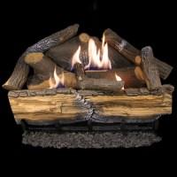 Cedar Ridge Hearth Recon 24-in 32,000-BTU Dual-Burner ...
