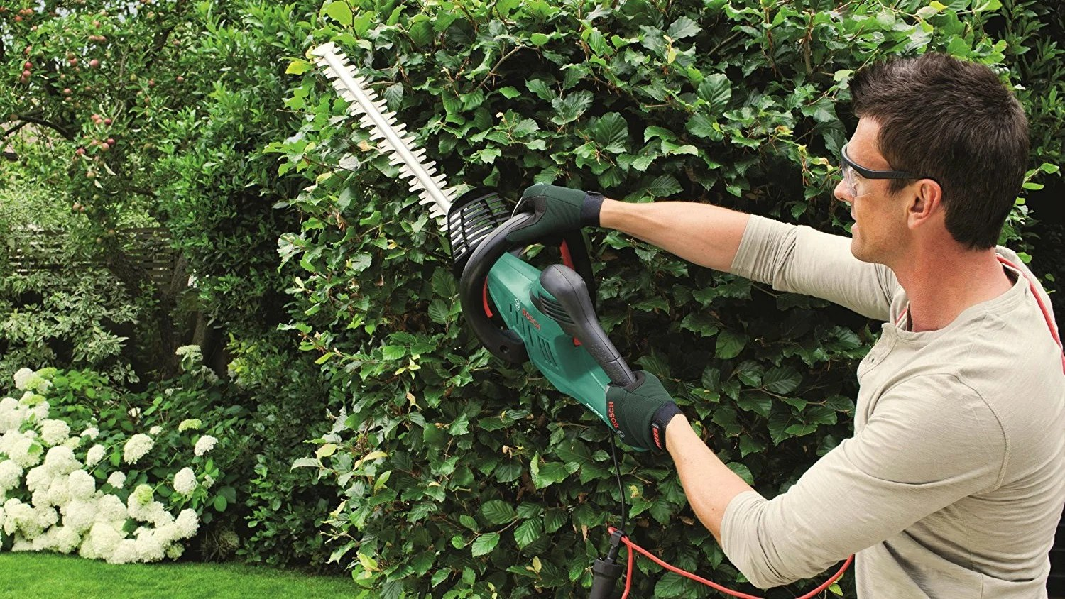 Lorbeerhecke Schneiden Best Hedge Trimmer: The Best Trimmers To Buy From £50