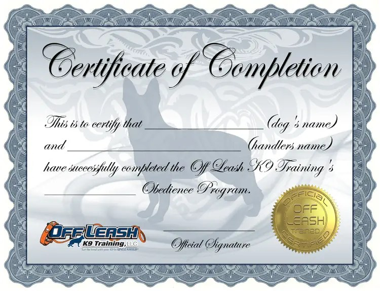 Entry #21 by BrandtGraphix for Design a Certificate of Completion
