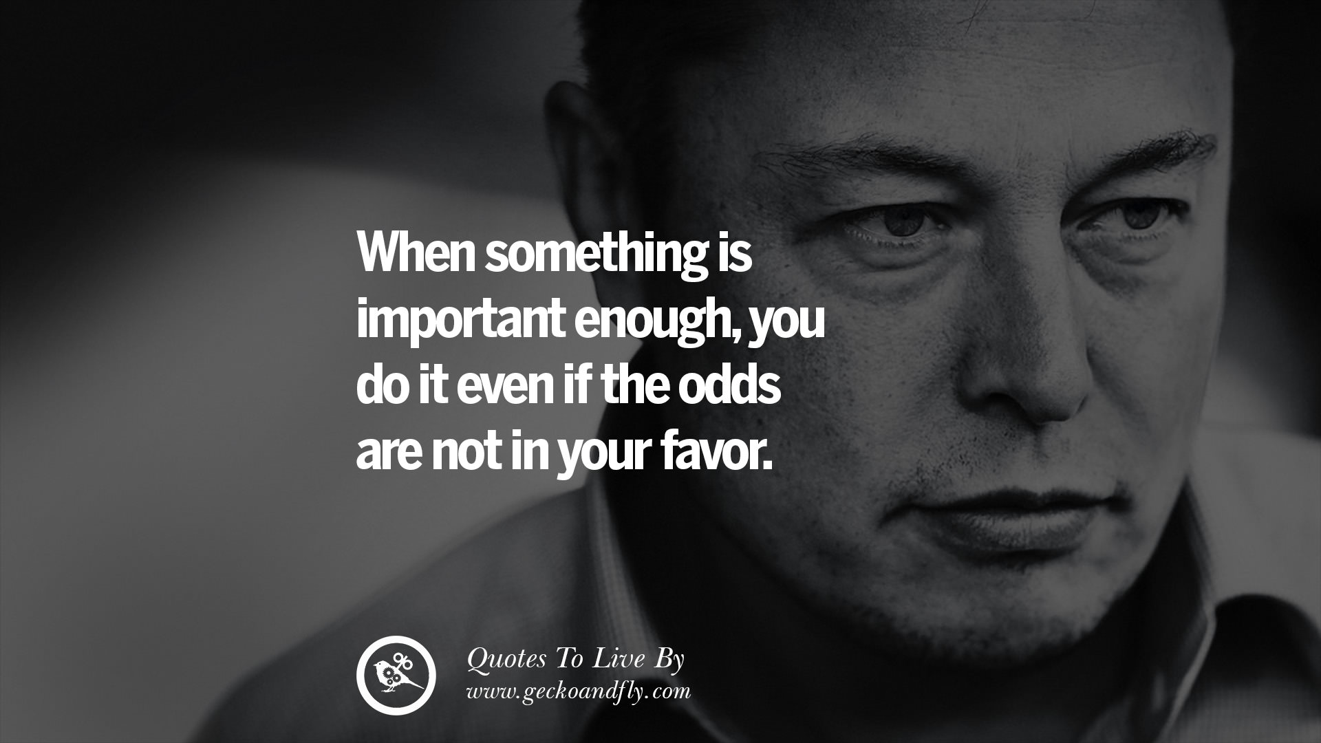 Motivational Quotes On Attitude Wallpapers 20 Elon Musk Quotes On Business Risk And The Future