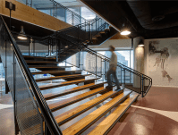 Staircase IMG College