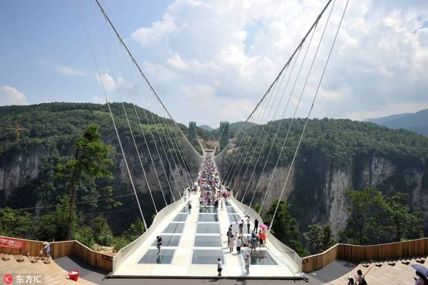 puente cristal 11