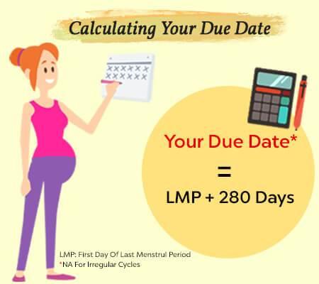 Pregnancy Calculator Due Date Calculator Conception Date