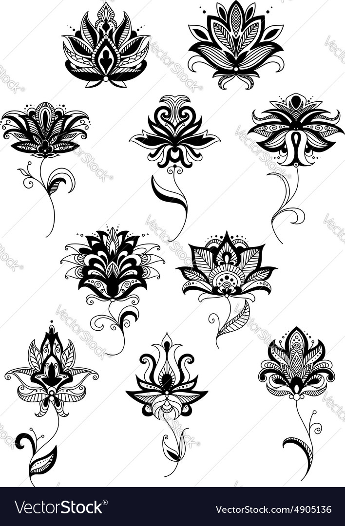 Black paisley flower design templates Royalty Free Vector