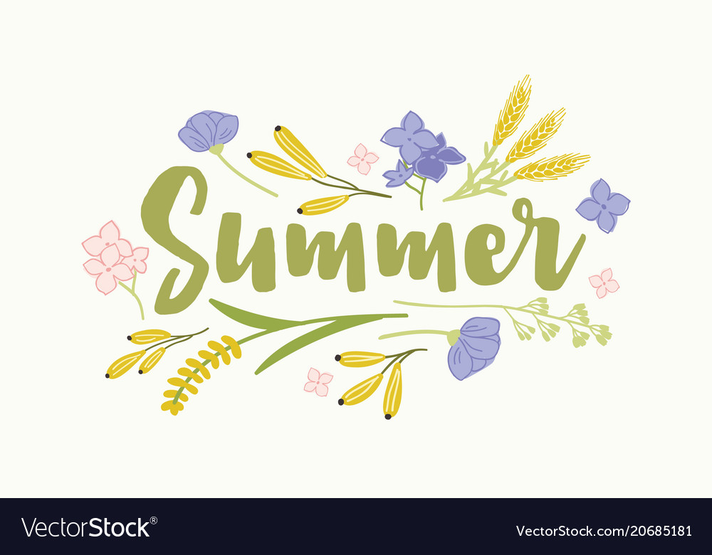 Summer word written with elegant cursive font and Vector Image