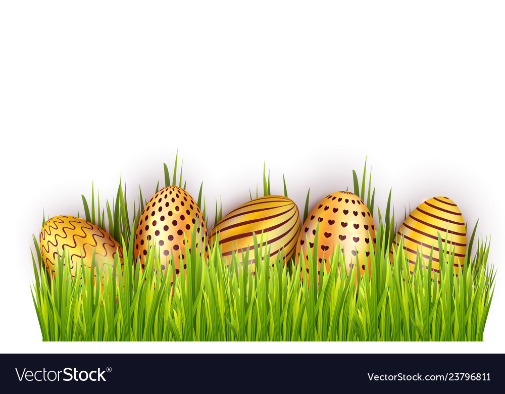 Border from golden decorated easter eggs in fresh Vector Image