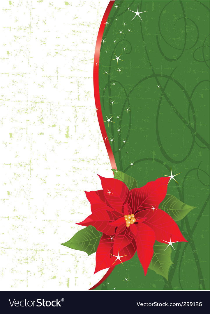 Poinsettia place card Royalty Free Vector Image
