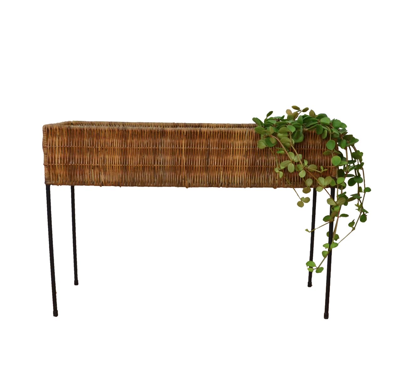 Bamboo Planter Stand Vintage Rattan Plant Stand 1960s For Sale At Pamono