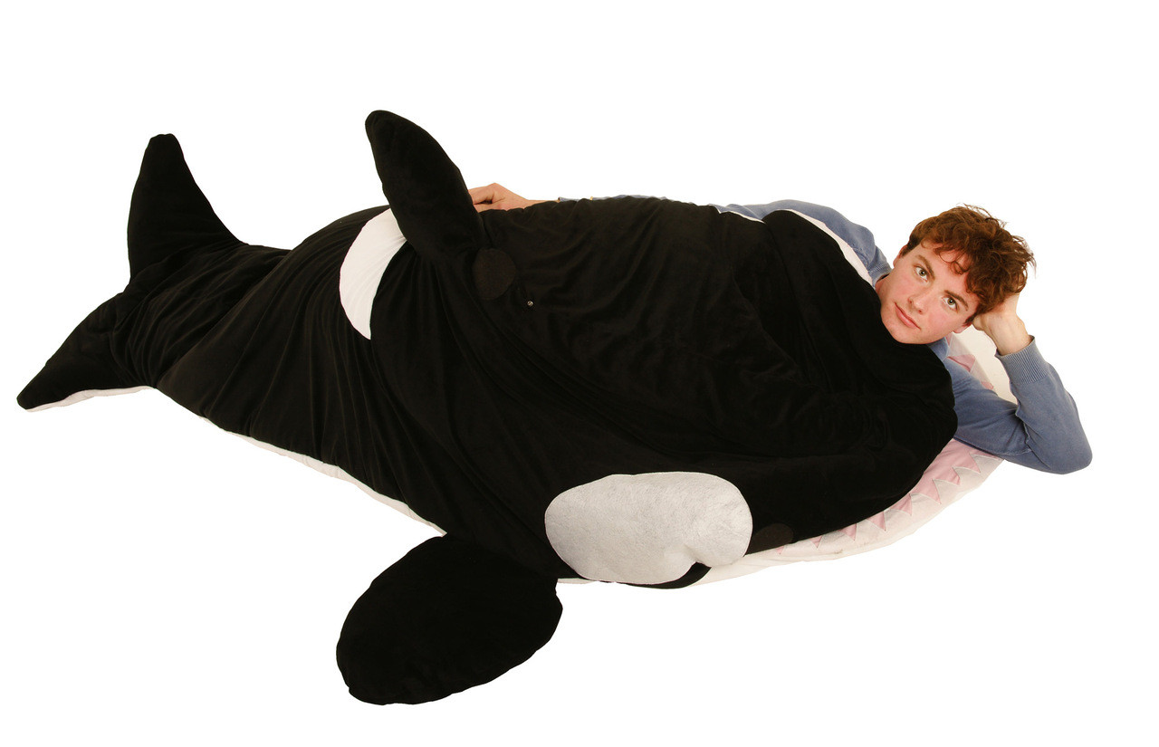 Shark Sleeping Bag Snore Ca Chumbuddy