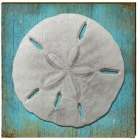 Sand Dollar Wood Art | 30x30 | Mill Wood Art