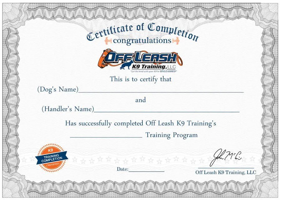 Entry #70 by oceanpixels for Design a Certificate of Completion For - certificate of completion training