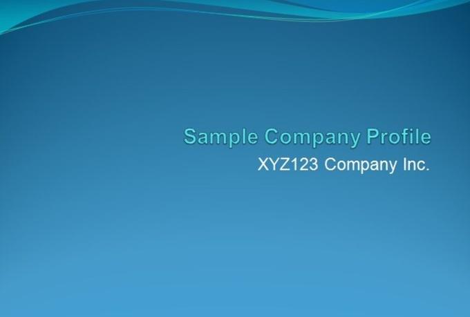 Company Profile Sample 9 Free Templates In Pdf Word Prepare A Brief Company Profile Presentation Fiverr