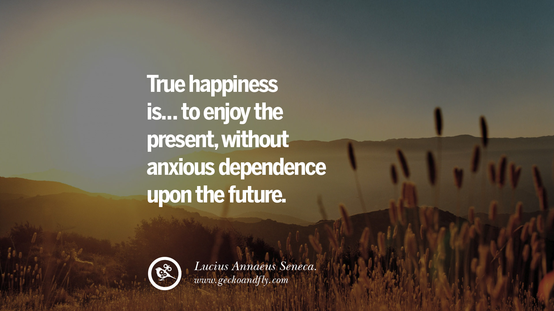 Pursuit Of Happiness Hd Wallpapers With Quotes The Pursuit Of Happiness Quotes Quotes Of The Day