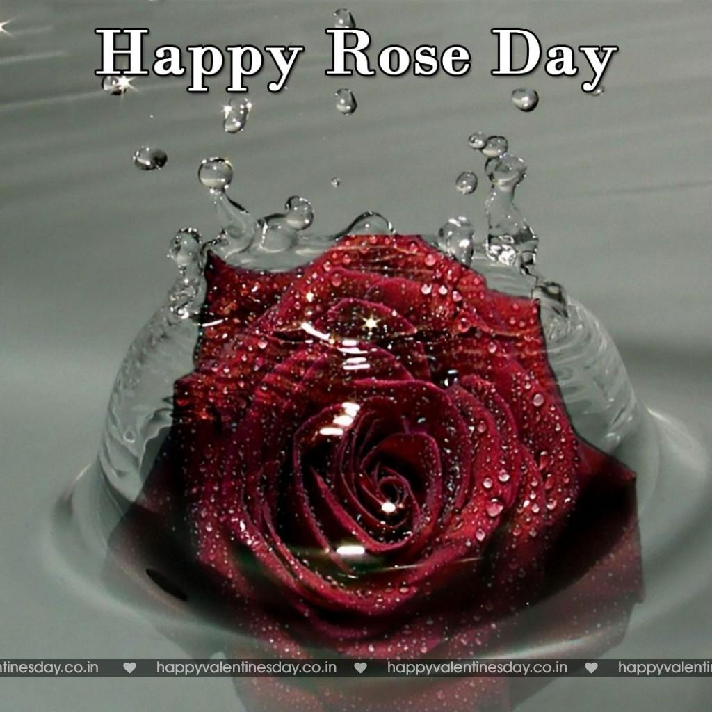 New Year 2015 Quotes Wallpapers Rose Day Happy Valentines Day Greetings Happy