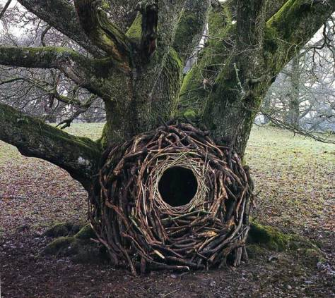 land-art-andy-goldsworthy-101