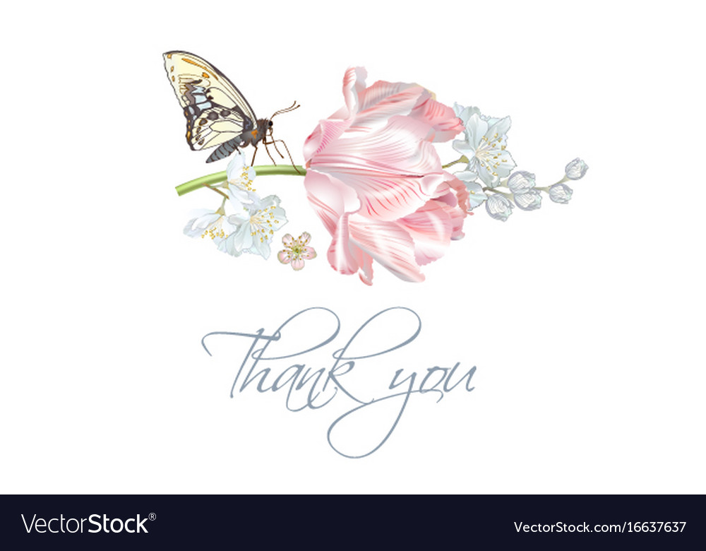 Tulip butterfly thank you card Royalty Free Vector Image - butterfly thank you cards