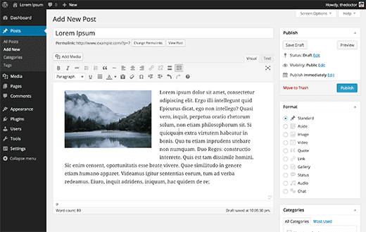 Editing a post in WordPress visual editor