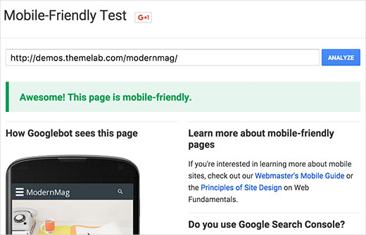Testing a responsive theme against Google Mobile Friendly Test