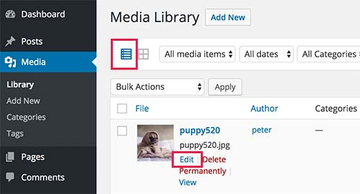Switch to list view and click on edit link below any image