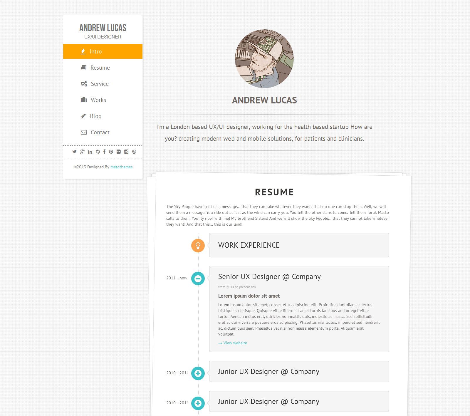 company portfolio sample resume