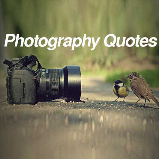 Warren Buffett Quotes Iphone Wallpaper 20 Quotes About Photography By Famous Photographer