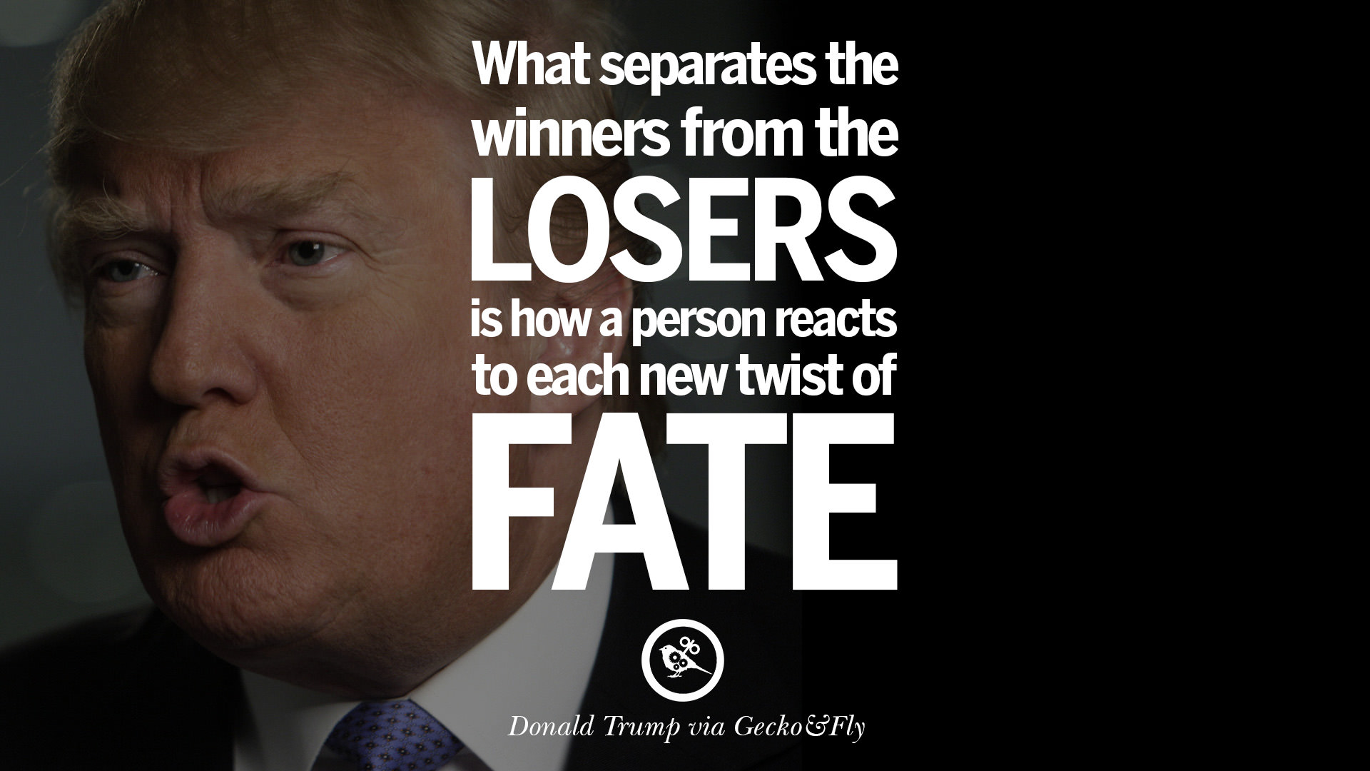 Passion Wallpaper Quote 12 Quotes By Donald Trump On Success Failure Wealth And