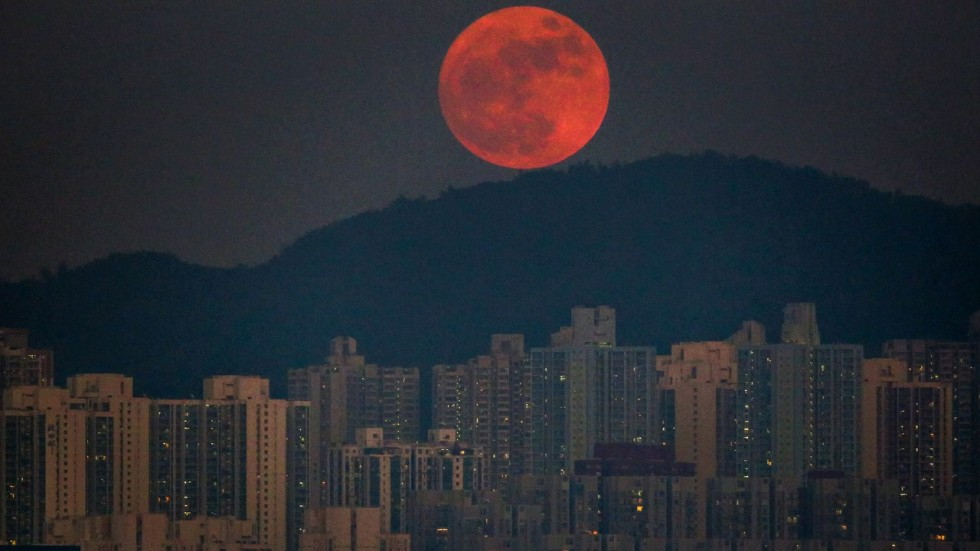 Blood Falling Wallpaper Clear Skies Forecast For Hong Kong S Supermoon South