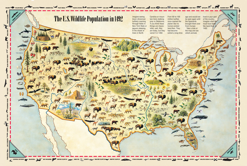 Wildlife population in 1492 maps Pinterest Native American - family reunion invitation cards
