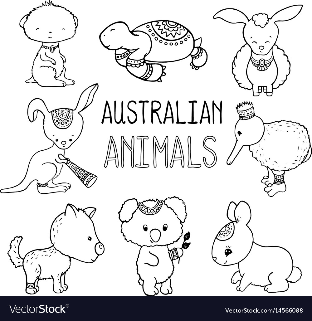 Australian Animals Drawings Cute Australian Animals Outlined Drawing
