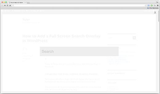 Full screen search