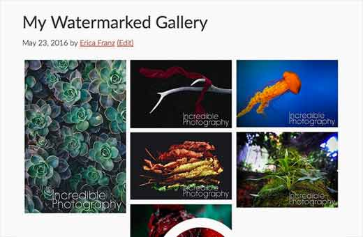 An image gallery in WordPress with watermarked images