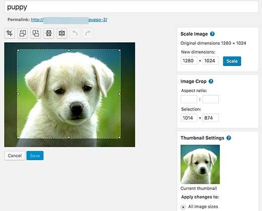 WordPress image editing