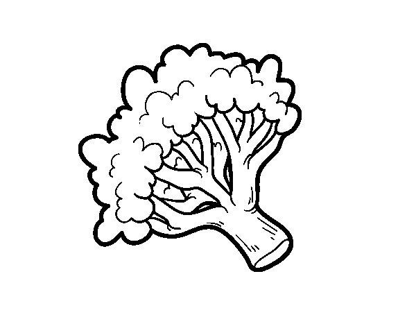 Disegno Di Ramo Di Broccoli Da Colorare
