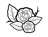 Flores Para Colorear Png Dibujo De Flores De Pensamiento Para