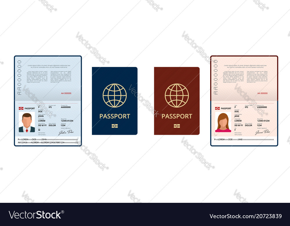 Blank open passport template international Vector Image - passport template