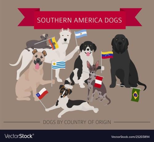 Medium Of Dog In Latin