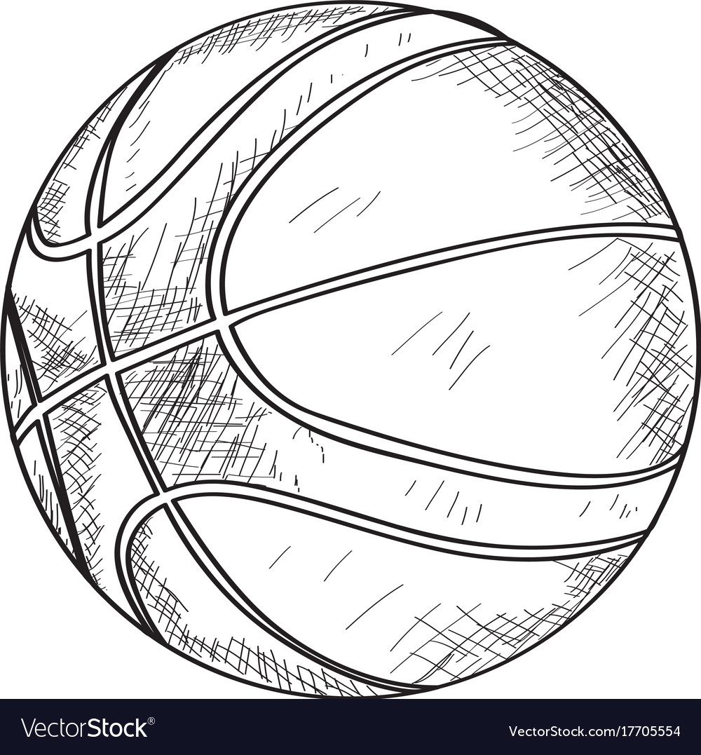 Basketball Ball Sketch Of A Basketball Ball Vector Image On Vectorstock