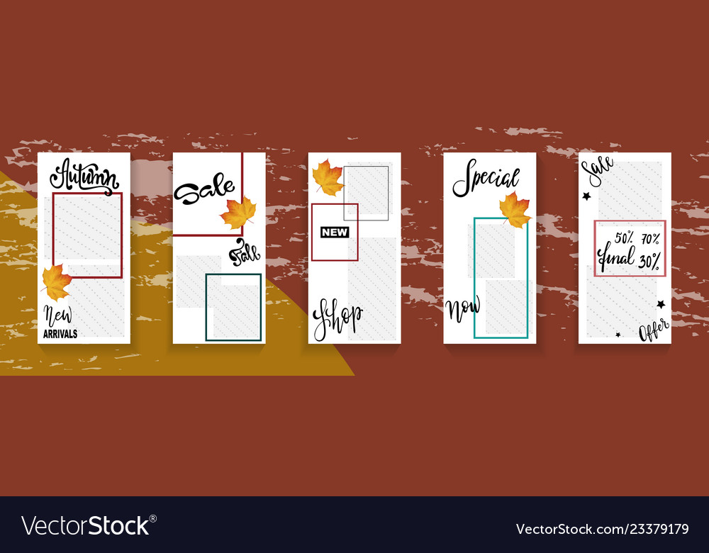 Social network story template autumn sale Vector Image