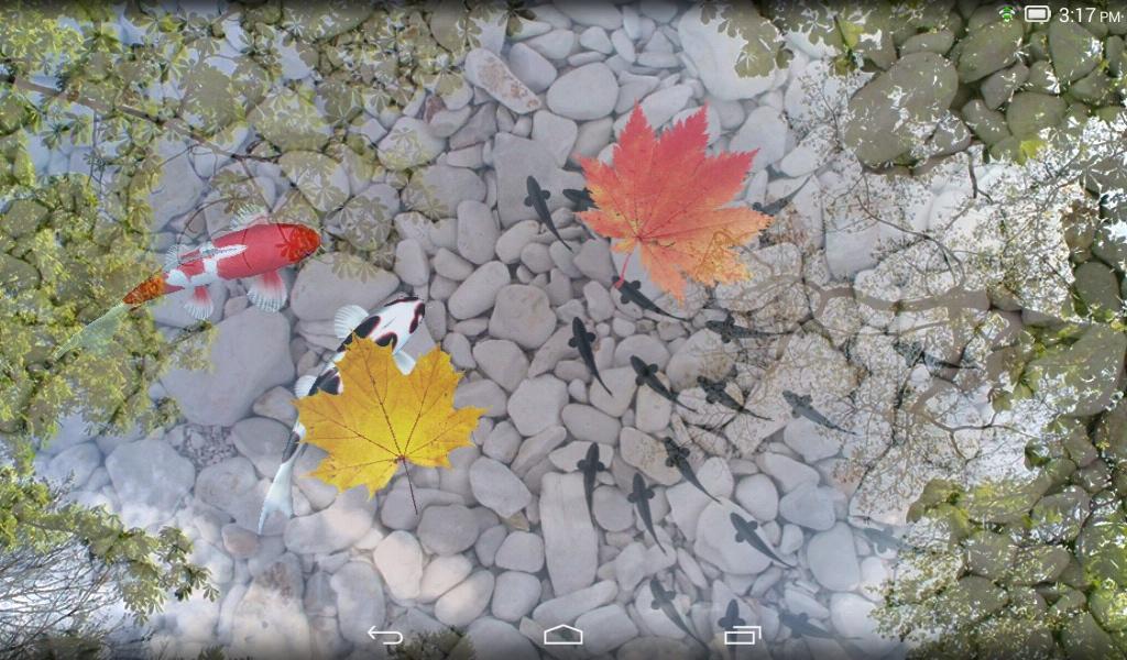 3d Koi Pond Live Wallpaper Apk Water Garden Live Wallpaper Download Apk For Android
