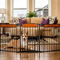 Design Paw Arched Flexi Pet Gate | Carlson Pet