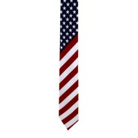 Red, White and Blue American Flag Tie