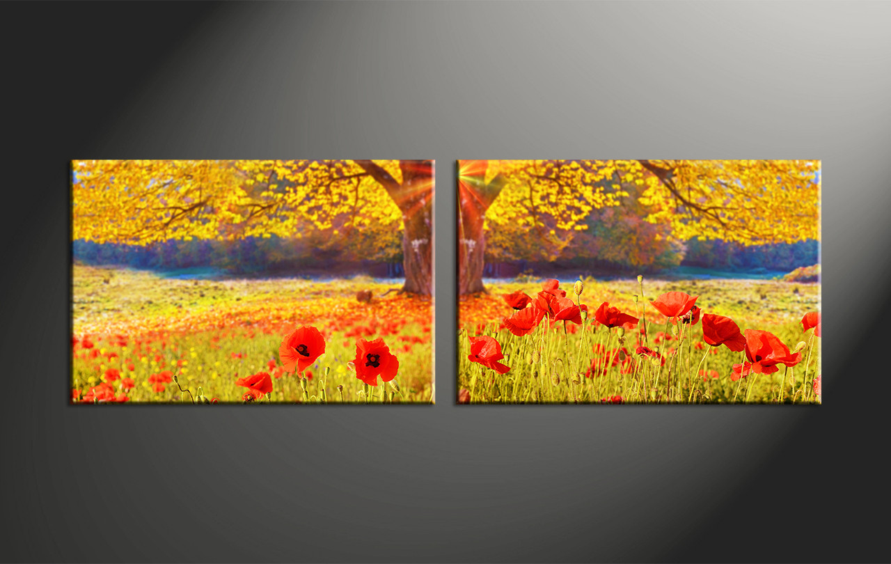 Large Black And White Posters 2 Piece Red Flowers Yellow Scenery Artwork