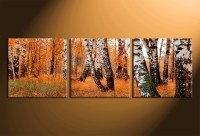 3 Piece Canvas Print, Scenery Canvas Photography, Orange ...