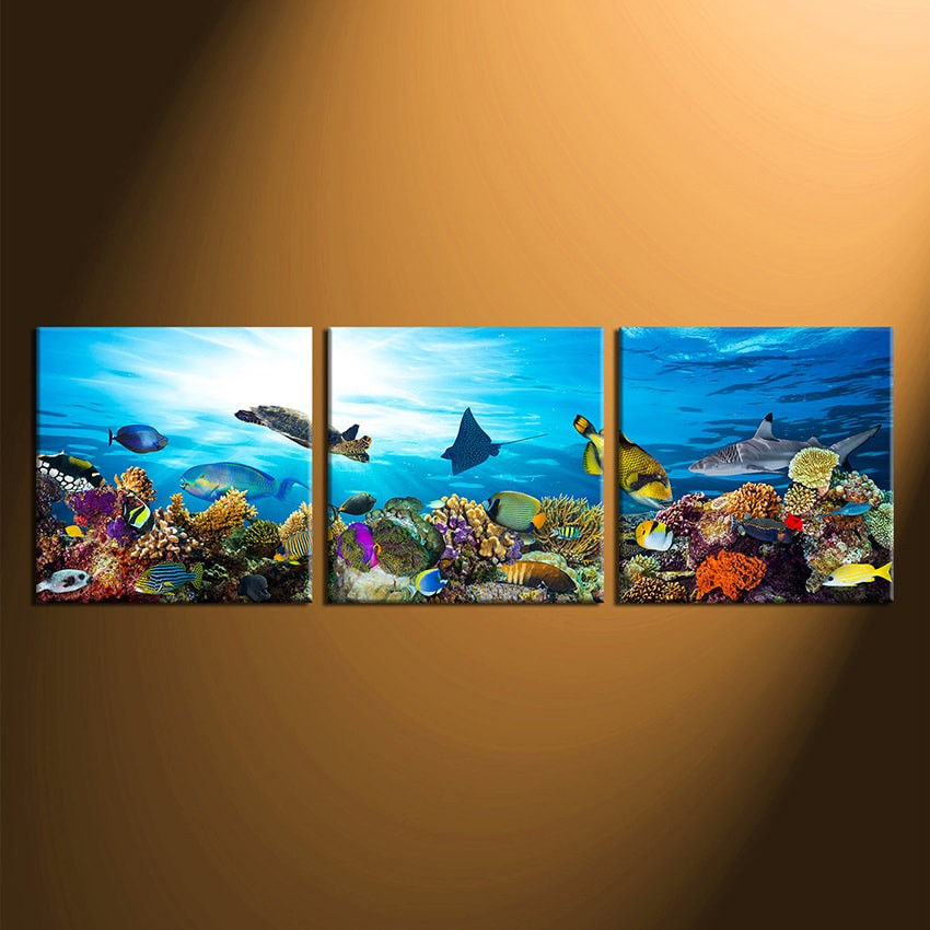 3 Piece Canvas Wall Art, Fish Large Pictures, Turtle Multi
